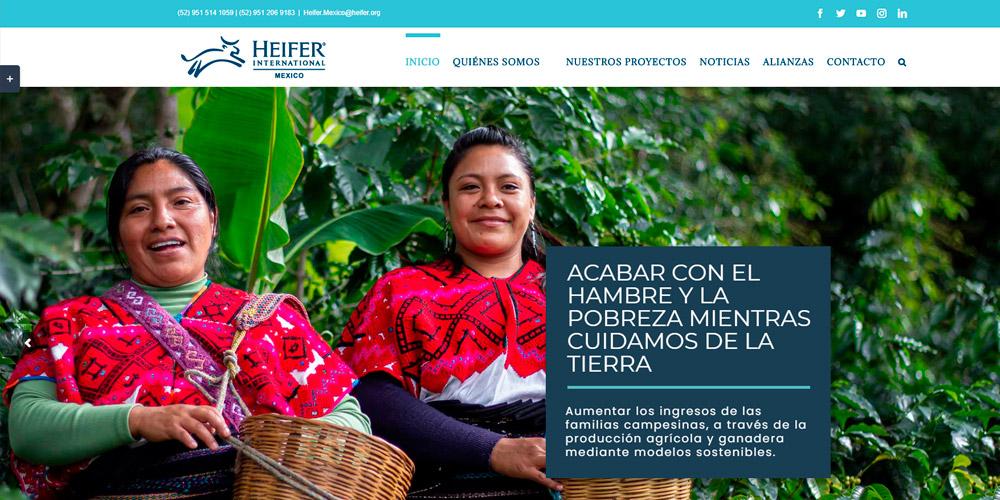heifer-sitio-web