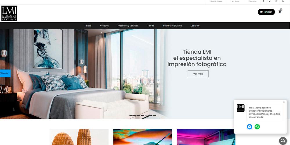 lmi-sitio-web